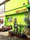 LILIUM CAFE