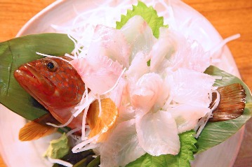 魚魚魚(トトウオ) - 下高井戸 - 東京都(和食全般,割烹・料亭・小料理)-gooグルメ&料理