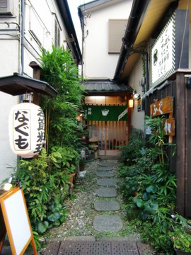 Nagumo image