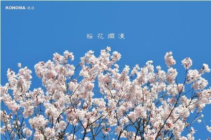 Natural ChineseKONOMA (ナチュラルチャイニーズコノマ) - 小田原 - 神奈川県(広東料理・上海料理)-gooグルメ&料理