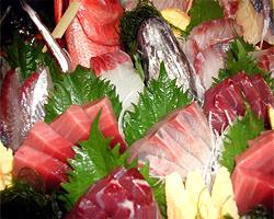 三崎漁港から直接仕入れ! 安くて新鮮な大人気のお魚居酒屋!