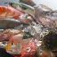 淡路島の魚菜屋 やいもん