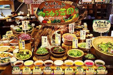 沖縄菜園ビュッフェ カラカラ あしびなー店 image