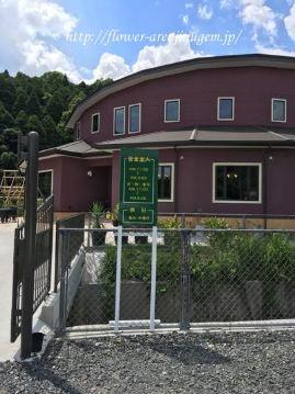 レストラン 森小休(しんこきゅう) image