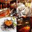 Oysterbar&Wine BELON神保町店