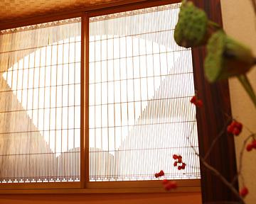 7種類の鎌倉野菜を使った「鎌倉やさい天丼」 相模湾の幸「生しらす丼」も人気
