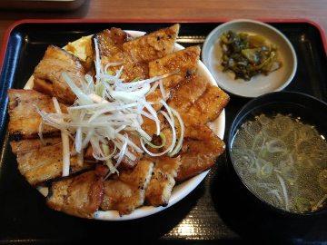大衆酒場 日本鶏園