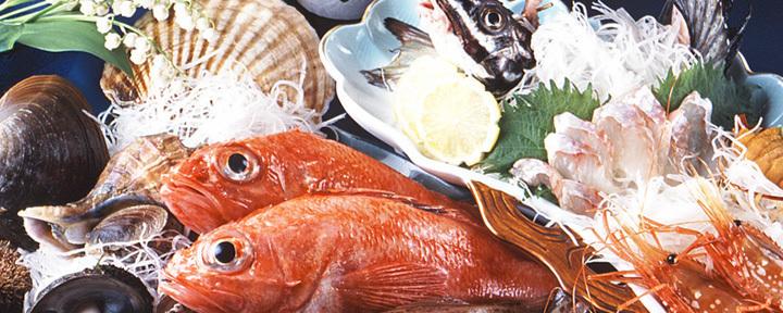 おが(オガ) - すすきの - 北海道(郷土料理・家庭料理,和食全般)-gooグルメ&料理