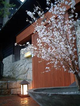 エルムガーデン(エルムガーデン) - 桑園/円山/伏見 - 北海道(懐石料理・会席料理,創作料理(洋食))-gooグルメ&料理