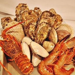 やまはな 浜焼き道場(ヤマハナハマヤキドウジョウ) - 山鼻/藻岩周辺 - 北海道(海鮮料理,居酒屋,和食全般)-gooグルメ&料理