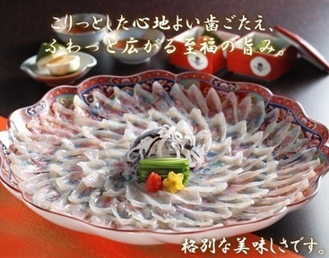魚処 豆狸(ウオドコロマメダ) - 尾鷲/熊野 - 三重県(和食全般,割烹・料亭・小料理)-gooグルメ&料理