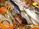 天然活魚センター 福玄丸