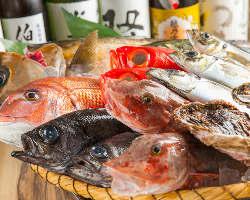 ◆こだわり◆毎日、横浜中央市場で頑固なまでに厳選しています♪