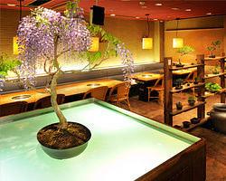 店内には かわいい盆栽たちがお出迎え 癒しの空間を演出します