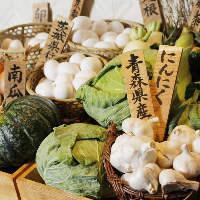 茨城県行方の自社ファームから毎日届く新鮮で味の濃い『旬野菜』