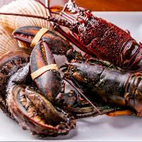 魚介類はオマール海老や、伊勢海老など高級食材をご用意しました