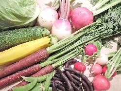 静岡三島より無農薬野菜を送っていただいております