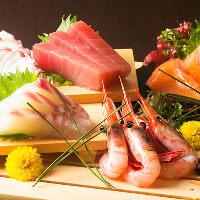 ♪新鮮なお魚を取り入れた刺身盛り合わせ5点盛→6点盛でご提供!