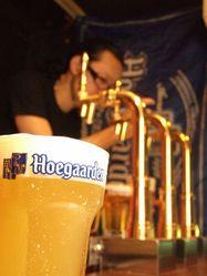 総数400種以上のボトルがズラリ。ビールは20種と豊富!!