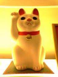 招福堂のマスター 豪徳寺の招福猫児「福ちゃん」です。