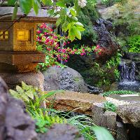[風情ある庭園] 池の鯉や四季の草花に和む寛ぎのひとときを