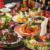 台湾屋台料理から高級食材まで、様々なお料理に舌鼓を