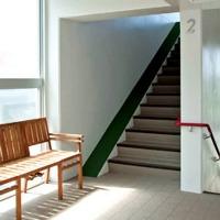 階段脇のゴムチップでワンちゃんも昇り降りが楽々。
