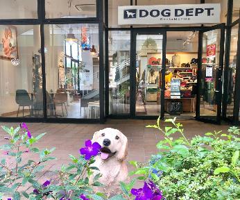 DOG DEPT CAFEレイクタウンアウトレット店の画像
