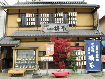 橋本の画像
