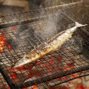 日吉 金魚 Bettei