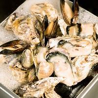 産直!!松島産!!牡蠣と蛤のガンガン蒸しは立川初??ご賞味あれ