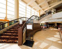 フロント階から階段を降りると、開放感のある店内を見渡せます