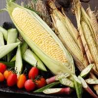 【食材】 肉も魚もお野菜も米も、北海道で育った食材を使用。