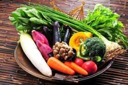 彩りも鮮やかな全国各地の農園野菜で四季折々の味覚を感じる