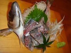 新鮮な海鮮を取り揃えております