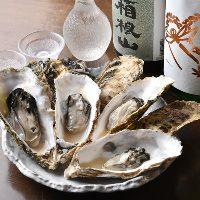 大ぶりの牡蠣。季節に併せて旬物をご用意。