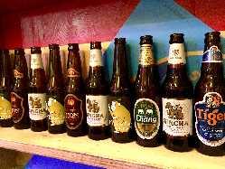 料理に合わせたアジアのビールやオススめクラフトビールいろいろ