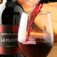 情熱の太陽をたくさん浴びた スペインワインが約70種類