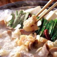 【大人気】 愛され続ける美味しさ「魚民名物 もつ鍋」