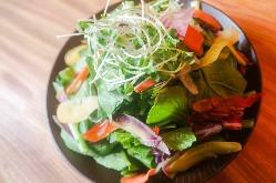 【小松菜サラダ】 神奈川産の小松菜は生でバリバリ食べられます