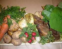 産直野菜で季節の味わいを提供します