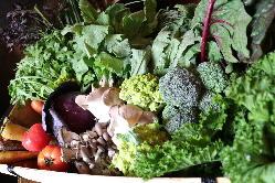 地元農家さんから取り寄せた自慢野菜!