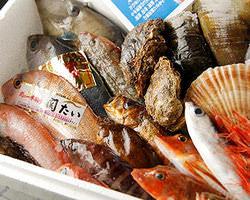 日本海や駿河湾直送!包丁さばきも 鮮やかな活魚料理が自慢です