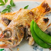 刺身でも食べられる鮮度抜群な海の幸は焼いても揚げても良し