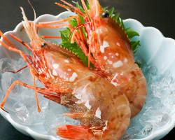 [厳選食材] 漁協や市場と直接契約だからなせる高品質&納得価格