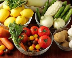 契約農家より毎日新鮮なお野菜が届きます♪