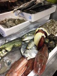 鮮魚が旨い!時には珍しいお魚も!?