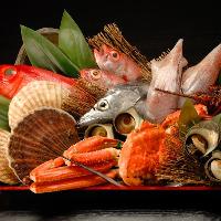 丹後や、和歌山、淡路など全国各地から鮮度抜群の魚介を仕入れ