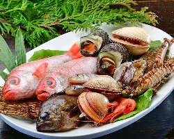 料理人が腕を揮う、季節の魚料理を存分にご堪能ください!