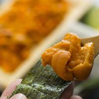 自慢の魚料理は、王道メニューから季節の珍味まで